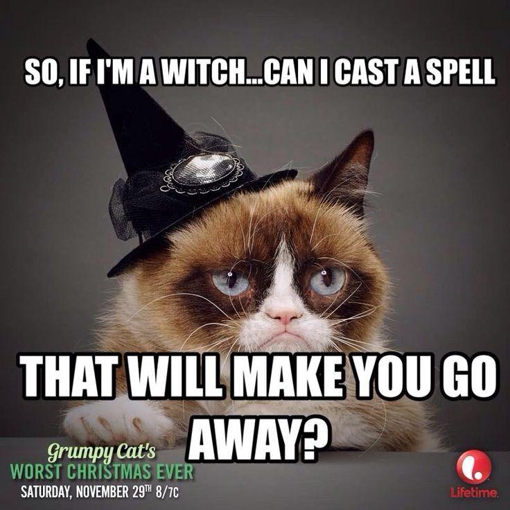 grumpy cat wedding invitations%0A Happy Halloween  Photos  Grumpy Cat  Pictures  Photographs  Grumpy Cats   Grump Cat