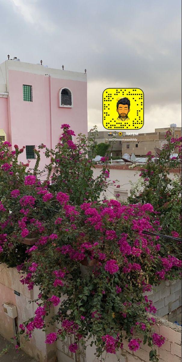 خلفيات ورد اصفر Love Quotes Wallpaper Arabic Love Quotes Iphone Wallpaper Quotes Love