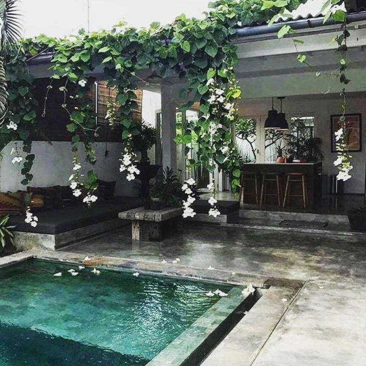 pool backyard peaceful