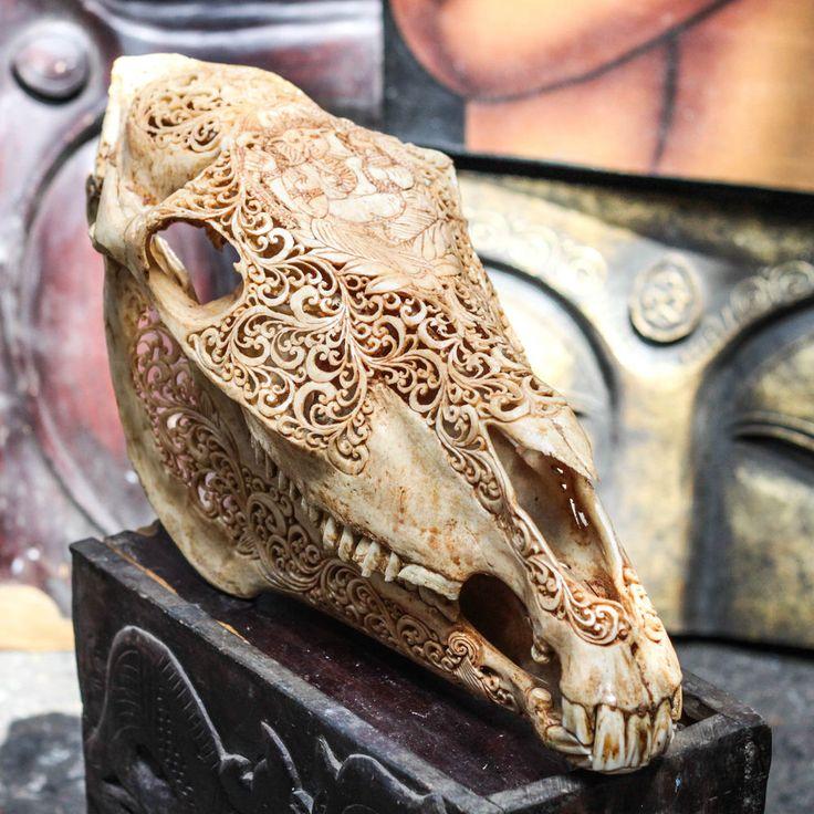 Hand Carved Ganesha Horse Skull Real Mule/ Animal Skull Bone + Teeth/ Taxidermy