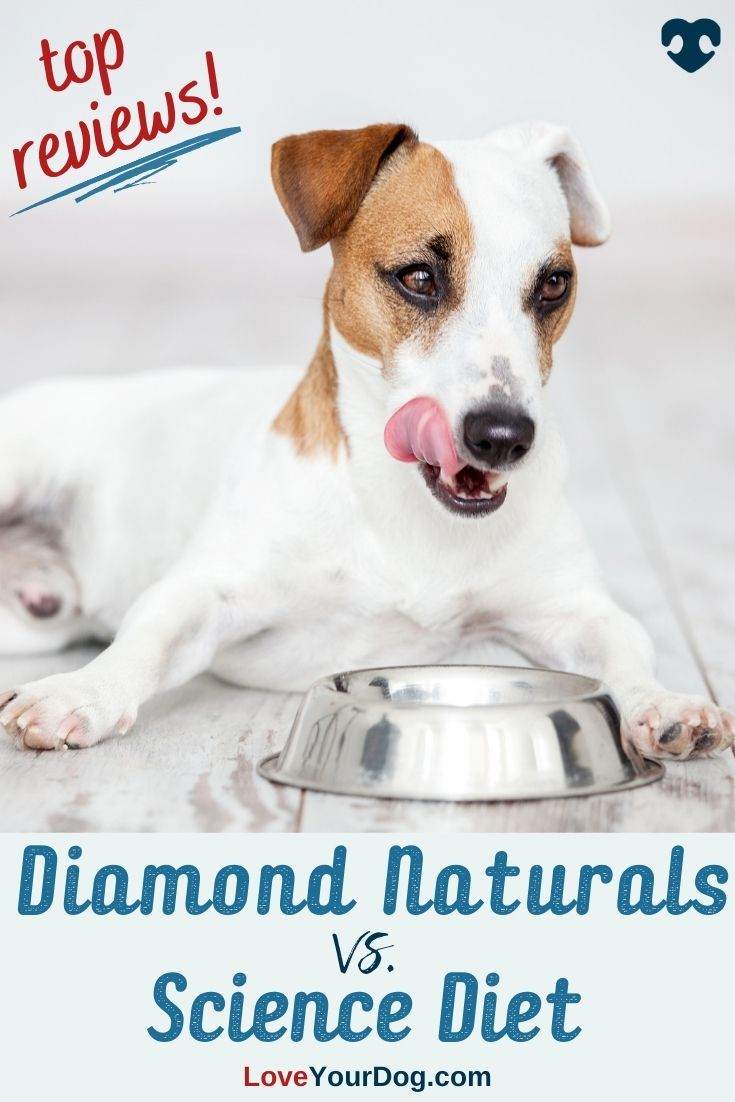 Diamond Naturals Vs Science Diet Which Dog Food Is Better Science Diet Science Diet Dog Food Best Dog Food