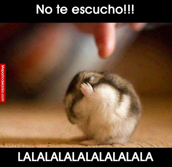 No te escucho!! Lalalalalalala!! #compartirvideos #felizcumple…                                                                                                                                                     Más