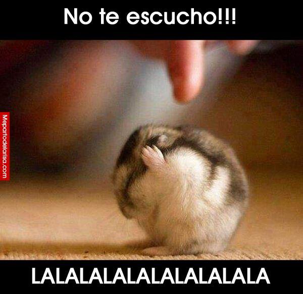 No te escucho!! Lalalalalalala!! #compartirvideos #felizcumple…