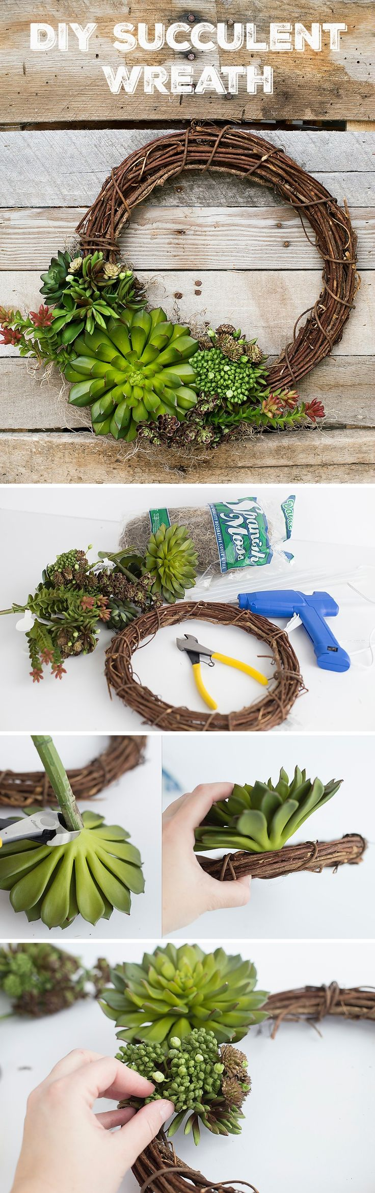 Spring Succulent DIY Wreath // This succulent DIY wreath is simple to make and captures the spirit of spring renewal perfectly. Make your own succulent wreath with a few supplies!