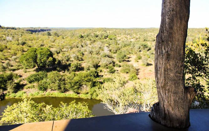 kruger-national-park-lookout-points N'wanetsi - Satara Rest Camp Although N'wanetsi is actually a picnic spot (keep a lookout for the park's top picnic spots next week), it has a separate lookout point that literally made my jaw drop. You get to look down onto a large natural dam in the N'wanetsi River, but you're so high up that you can see a massive expanse of the surrounding bush.