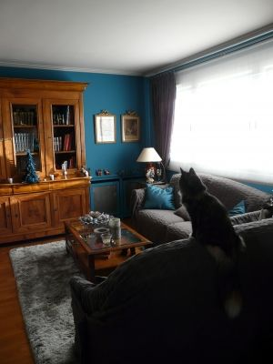 d co int rieur bleu et gris bleu canard faire ressortir meubles anciens interieur avez mis. Black Bedroom Furniture Sets. Home Design Ideas