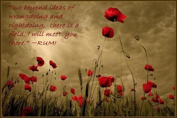 I will meet you thereWords Of Wisdom, Summer Day, Red Flower, Guest House, Art, Wisdom Quotes, Poppies, Rumi Quotes, Fields
