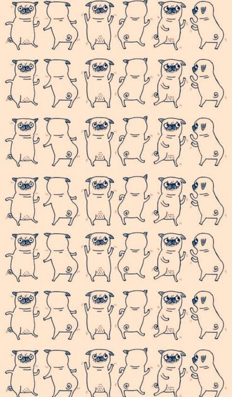 Pugs/ walpaper