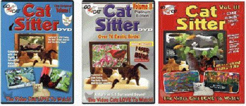Cat Sitter DVD Great for your Cat or Kitten - CatSitter DVD 4 options you choose in Pet Supplies, Cat Supplies, Toys | eBay