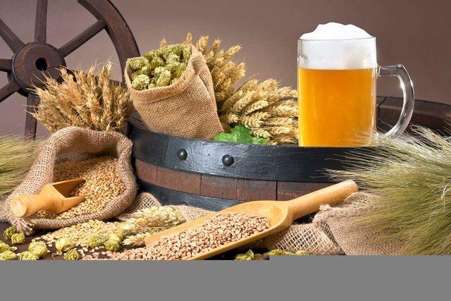 Deutschland feiert 500 Jahre Reinheitsgebot für das Lieblingsgetränk (fast) aller Camper. Grund genug für uns, auf Bier-Tour zu gehen – und mit allen Sinnen das flüssige Kulturgut zu erleben.