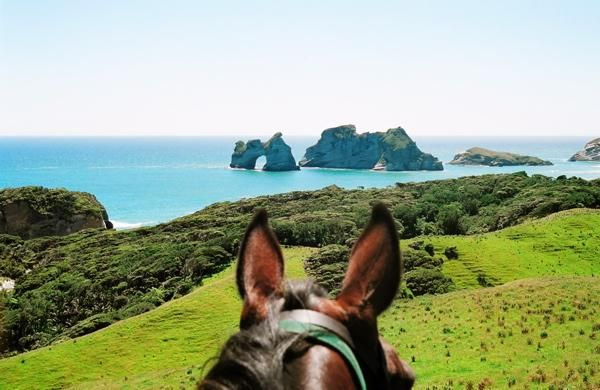 Cape Farewell Horse Treks, NZ