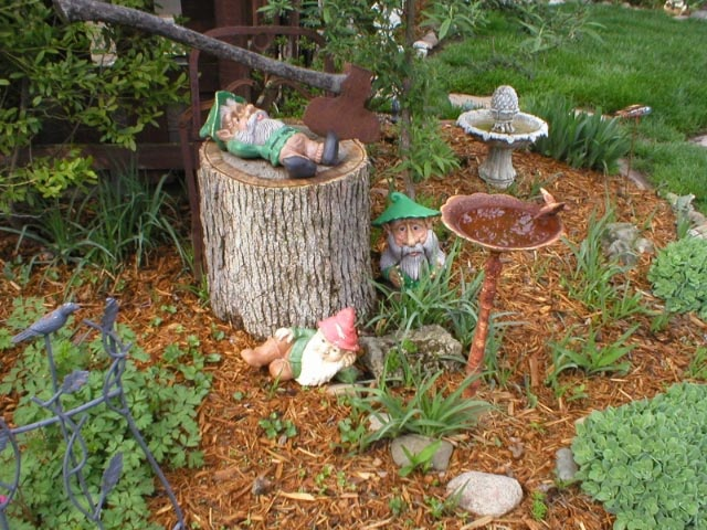 Gnome In Garden: 90 Best Images About Gnome Sweet Gnome On Pinterest