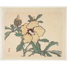 幸野楳嶺: Flowering Hollyhock - ミネアポリス美術館