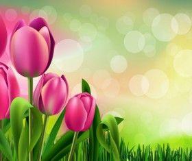 Wiosna kwiat piękne tła wektory 04