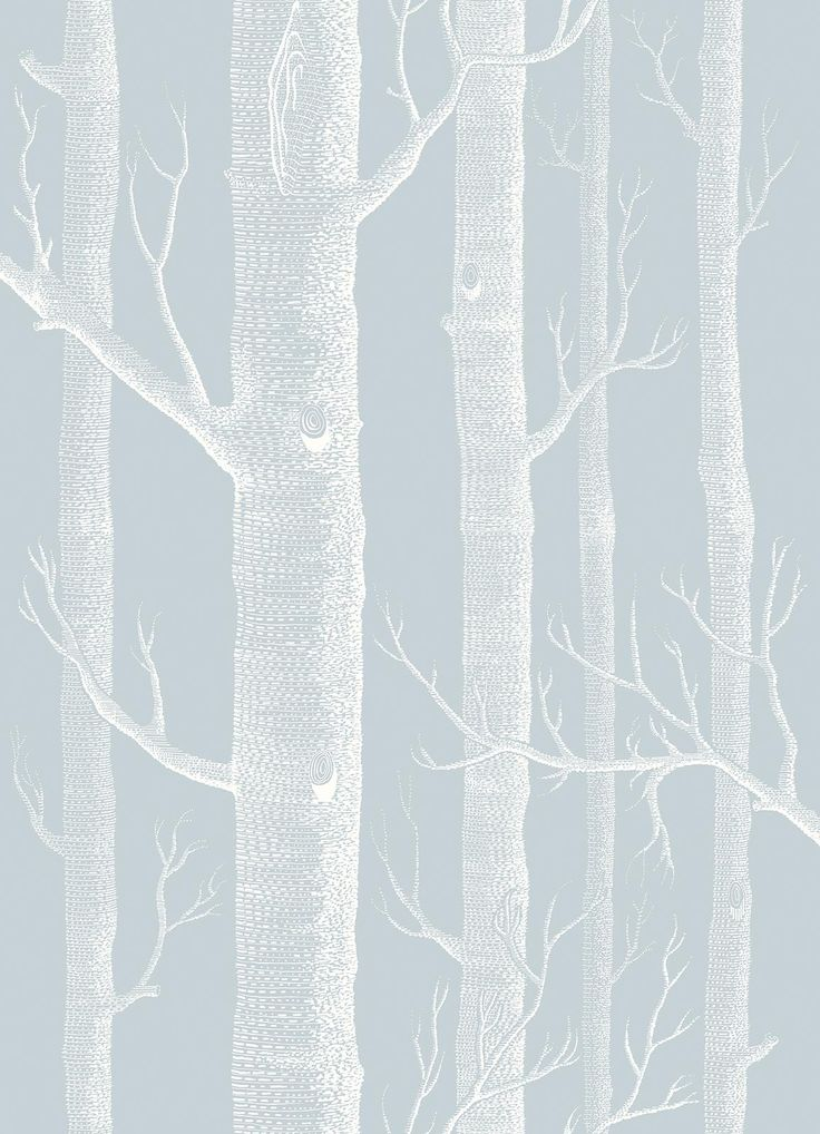 Cole & Son Woods 103/5022 Powder Blue wallpaper from the Whimsical collection, priced per roll. A true Cole & Son classic, featuring a forest of silver birch trees, Woods is presented here in three brand new colourings of aged pink and gilver, blue and white and eau de nil and gold
