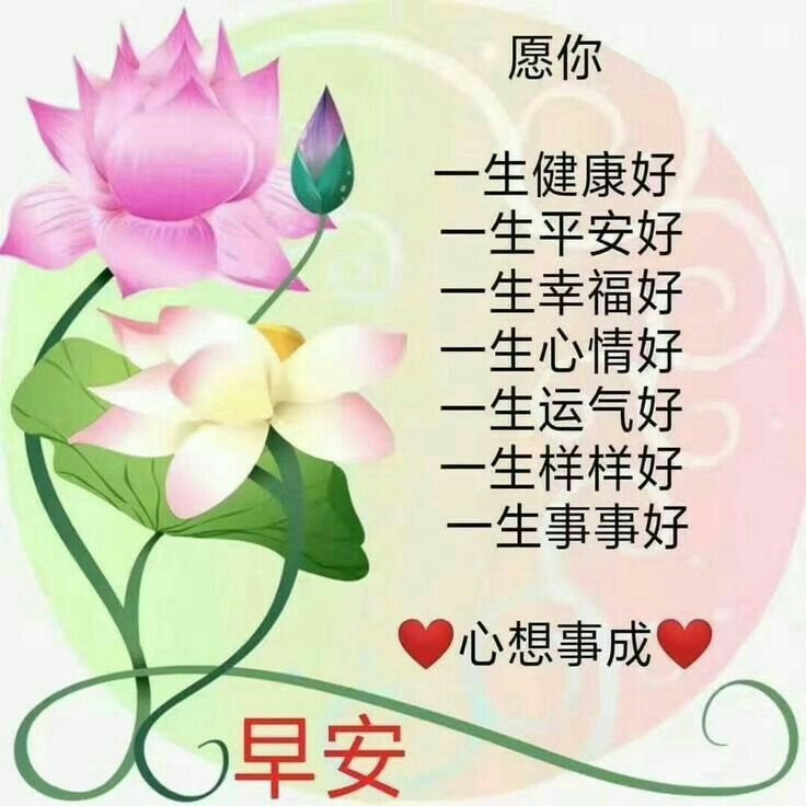 Pin By Yia Lili On 早安 周末 新周 祝福语图片 Good Morning Wishes Morning Greeting Good Morning Greetings