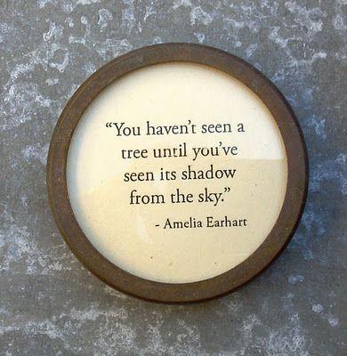 Quote...Amelia Earhart...her perspective