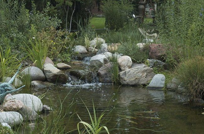 17 best ideas about pond water features on pinterest for Koi pool water gardens thornton