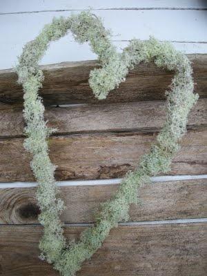 Wire+moss!