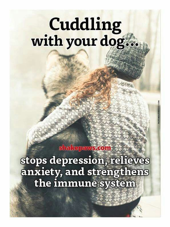 Love them all!, please adopt a dog, they are the most thankful of all. - Tap the pin for the most adorable pawtastic fur baby apparel! You'll love the dog clothes and cat clothes! <3