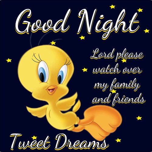 Good Night My Tweetyful Sisteru0027s! Have Tweet Dreams!