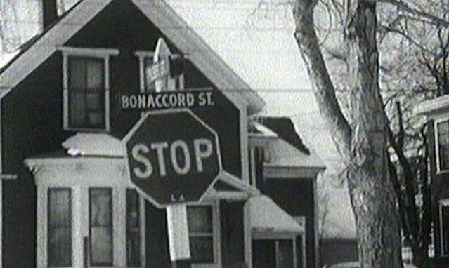 Long métrage documentaire tourné dans les coulisses de l'action à l'Université de Moncton, théâtre du réveil acadien de la fin des années 1960.