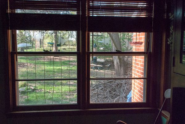 """We Made """"Zen Wind Curtains"""" Using Acopian BirdSavers DIY Project Directions to Reduce Bird Strikes on Our Windows."""