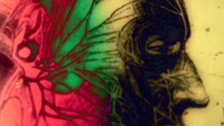 "The Devil Himself ""Inhuman"" ft. Tyler Shelton of Traitors (OFFICIAL VIDEO)"