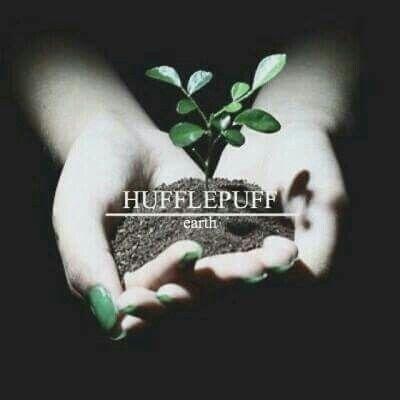 Hufflepuff / Earth
