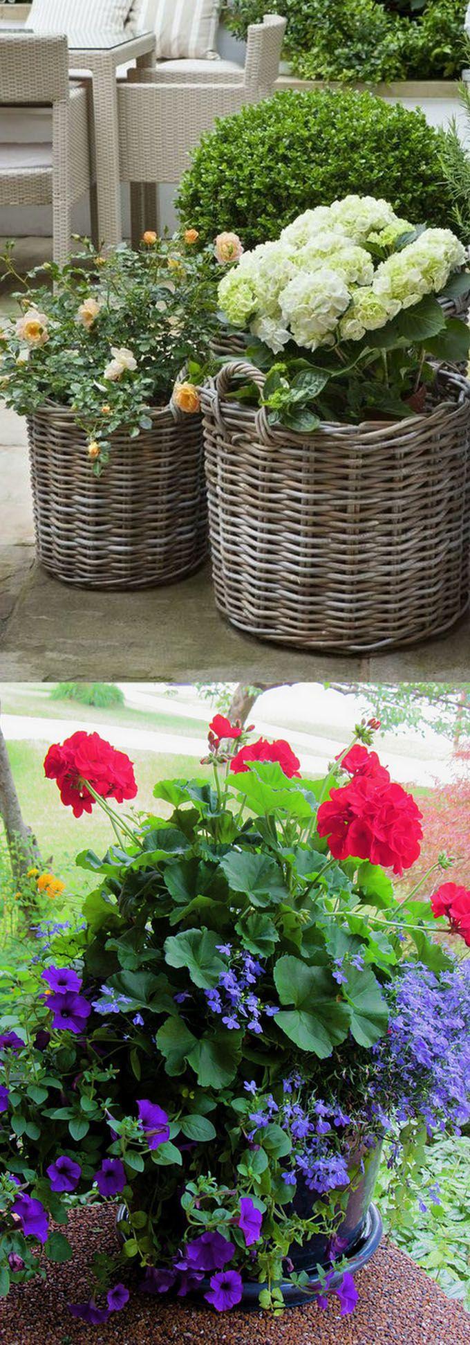 Best 25+ Rose garden design ideas on Pinterest | Beautiful gardens ...