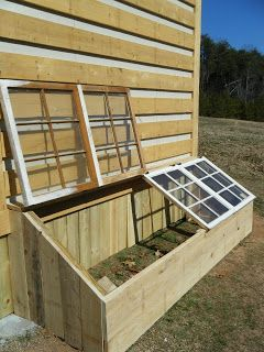 Little green house for seed-starting, made from old windows hinged onto lumber...