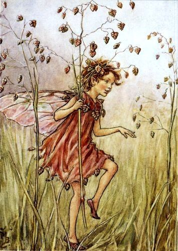 The Totter Grass Fairy, by Cicely Mary Barker.