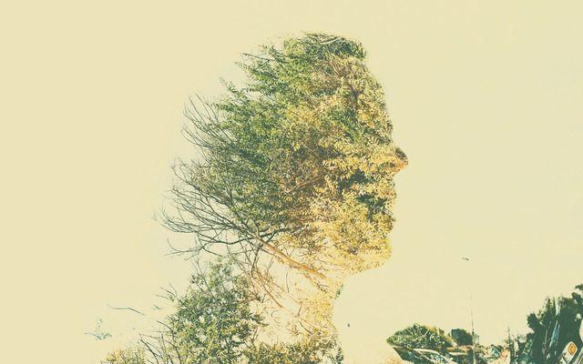 Spirit of Nature 2 by Gianluca Scolaro