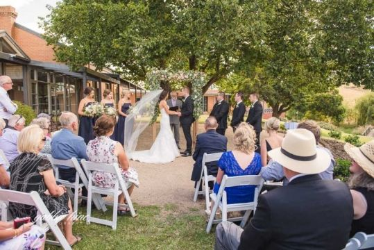 Wedding Ceremony under the old oak tree