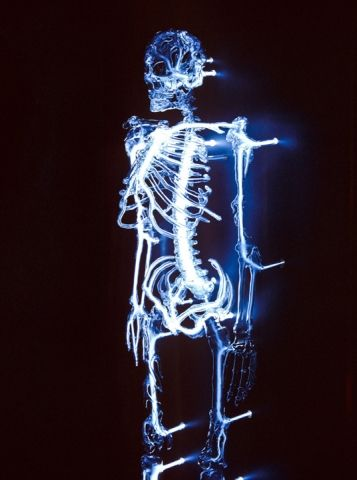 """""""Embodiment"""" Eric Franklin: Neon Skeletons, Art Sculpture, Neon Glasses, Eric Franklin, Glasses Neon, Human Skeletons, Borosil Glasses, Bi Eric, Flamework Glasses"""
