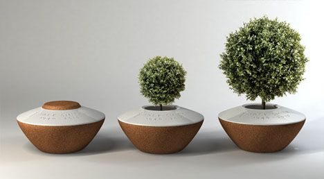 Come back as a tree. Funeral urn lets you plant a tree in ashes via @treehugger Margaux Ruyant