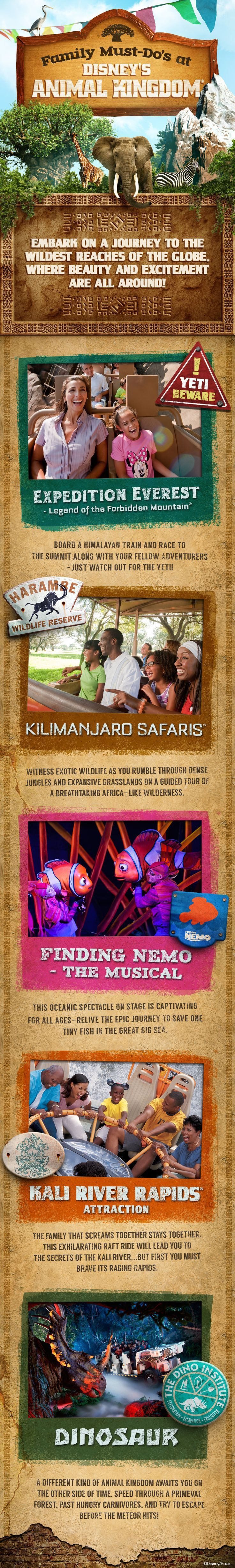 Start your expedition at the Walt Disney World Resort's wildest theme park with these Family Must Do's at Disney's Animal Kingdom. disney animal kingdom #disney