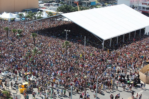 Experience : Hangout Music Fest  4-year vet right here :)