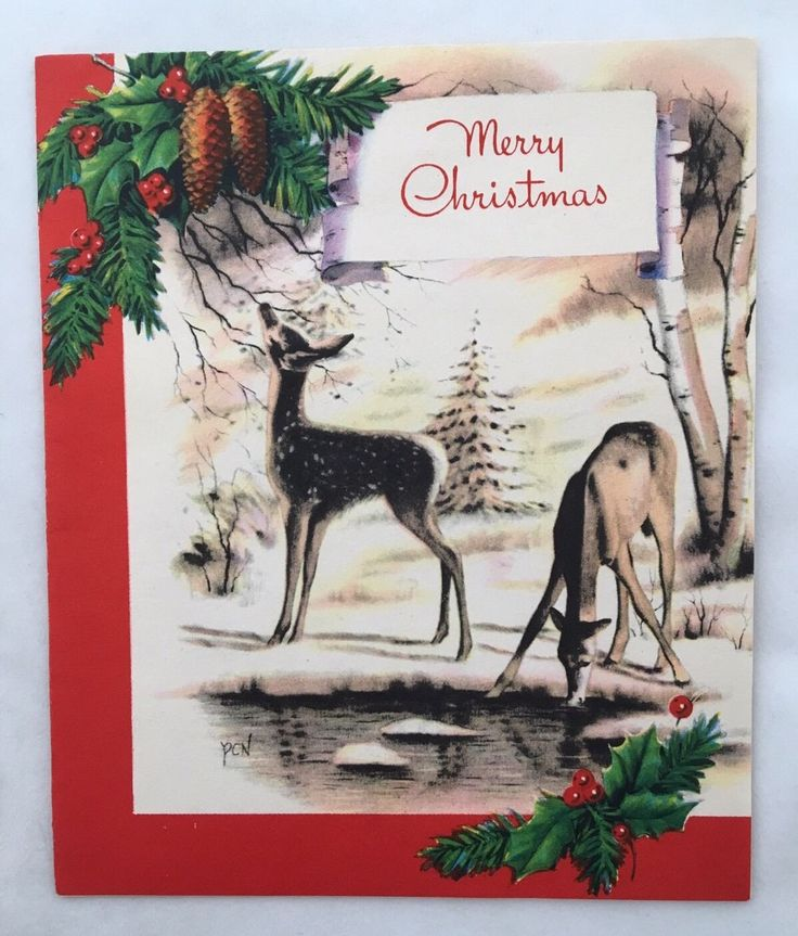 Vintage Christmas Card Deer Creek Pond Forest Tree Pine Cone Holly Fireplace FOR SALE • $4.00 • See Photos! Money Back Guarantee. Vintage Christmas Card. Sweet deer in the forest. Snow covered trees, Holly and Pine Cone accents. Inside the Card is a warm cozy fireplace. Signed inside and is in Excellent 162445877797