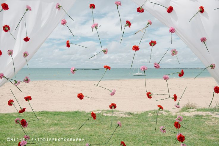 Carnations hang from fishing wire to create a backdrop for the ceremony where the bride and groom stand.