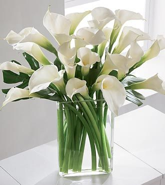 I love the simplicity and elegance of a large bouquet of Calla Lilies, especially in this modern vase.