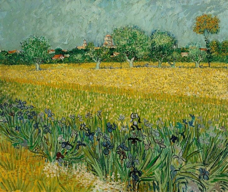 View of Arles with Irises in the Foreground ~Vincent van Gogh