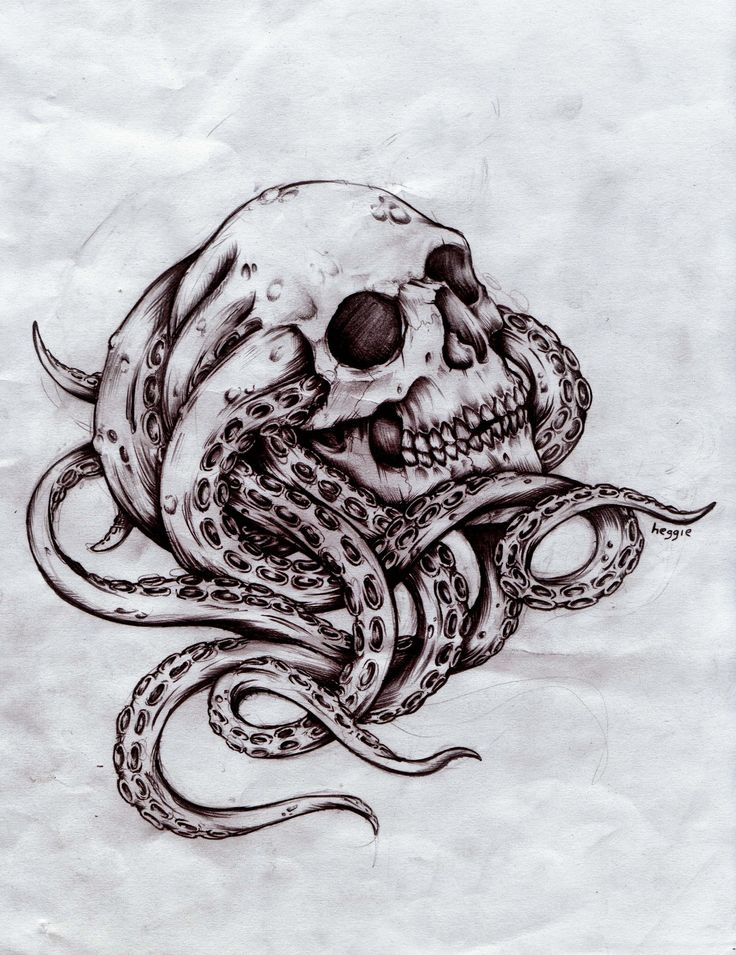 Skull Octopus Design (2011) mr heggie