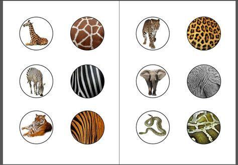 Voici notre jeu d'association des animaux avec leur pelage (ou autre) à télécharger en PDF Fichier à télécharger en PDF