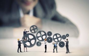 Micii antreprenori care şi-au deschis o afacere în domeniile cu potenţial de dezvoltare, precum productie şi servicii, construcţii, IT şi software, media,
