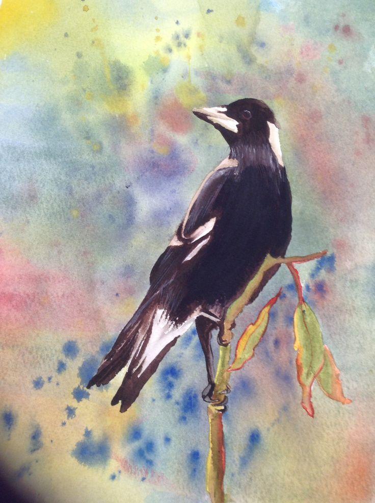 Early watercolour -Australian Magpie