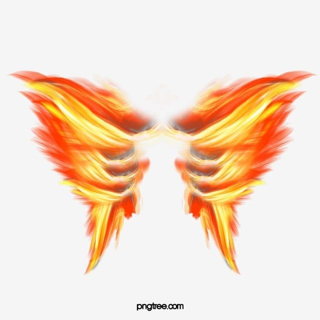Burning Wings Wings Clipart Fire Png Transparent Clipart Image And Psd File For Free Download Clip Art Wings Eagle Pictures