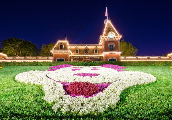 Hotels Near Disneyland: Where to Stay (off-site or on-site)