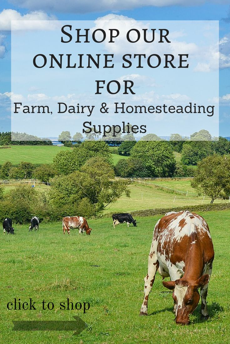 Shop @ One Ash Farm and Dairy Supply for all your farm, dairy and homesteading needs!