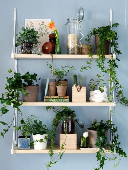 Transform some simple shelving into a botanical display with some artificial trailing plants. View our range here